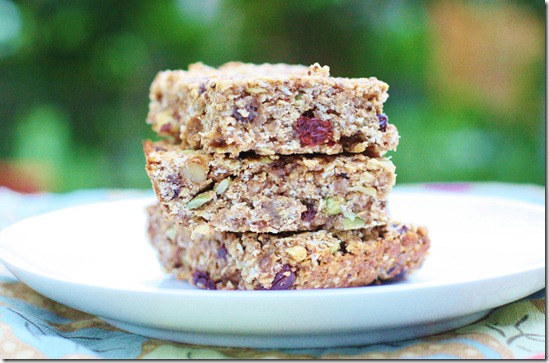 Vegan Oatmeal Raisin Snack Bars