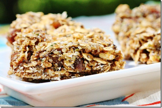 Speedy, No Bake Omega-3 Vegan Snack Bars