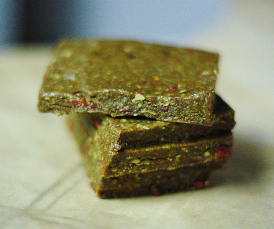 Almond oat and goji berry protein bars vitamix snack bar success img2750 forumfinder Choice Image