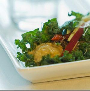 Thrive Forward with 10 Vegan, Satisfying, Low Prep Mini-Meals