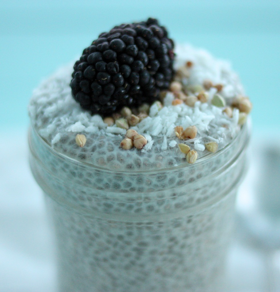 Basic Raw, Vegan Vanilla Chia Seed Pudding: Step by Step Instructions ...