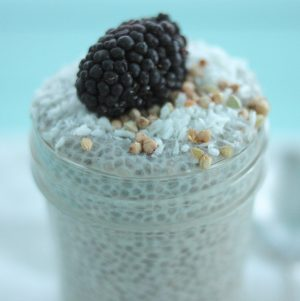 Basic Raw, Vegan Vanilla Chia Seed Pudding: Step by Step Instructions and Recipe!