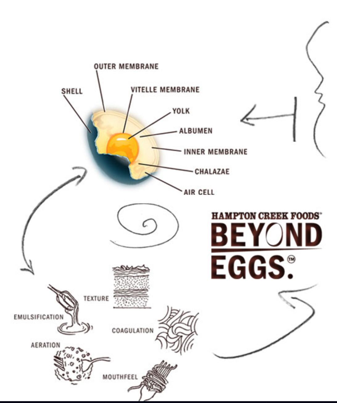Beyond Eggs: A Profile of Hampton Creek Foods. Plus My Recipe for ...