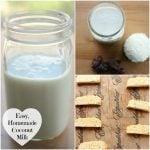 Quick, Easy and Delicious Homemade Coconut Milk. Bonus Recipe for Raw, Vegan Coconut Biscotti.