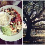 Weekend Adventures in New Orleans