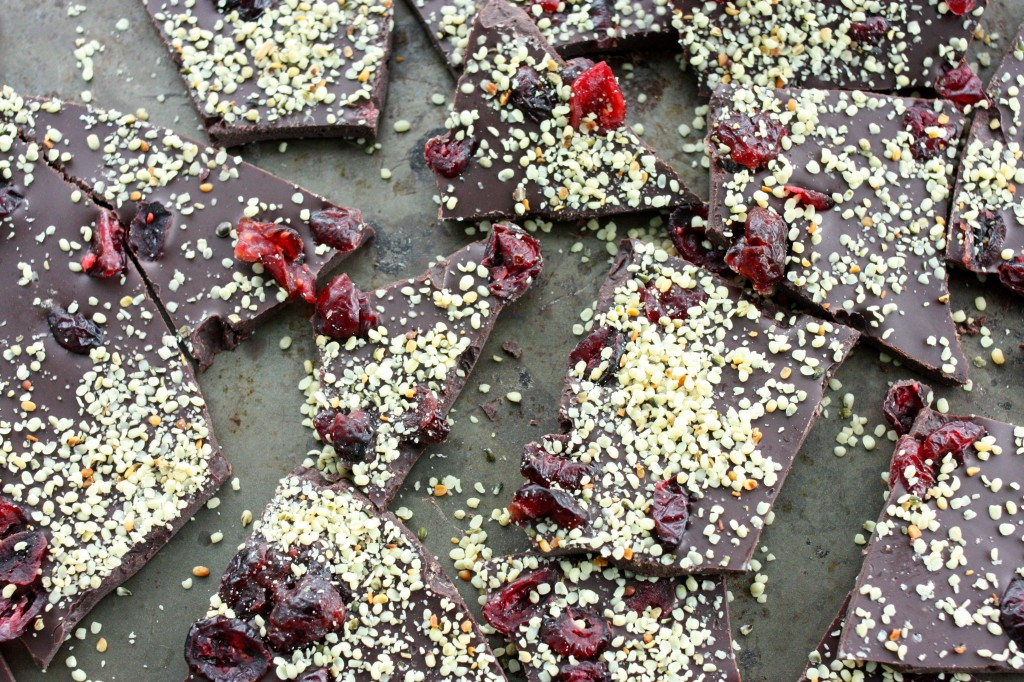 raw chocolate cranberry hemp bark close up