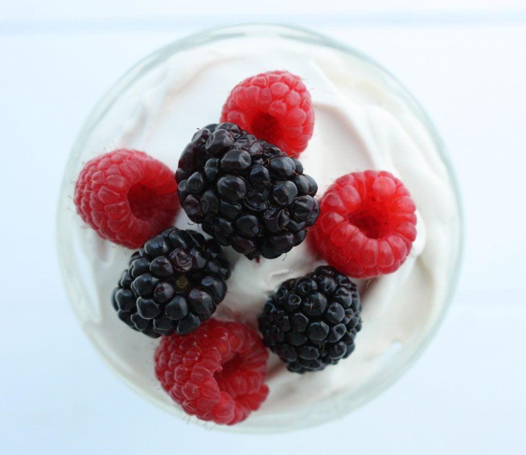 Homemade coconut milk yogurt close up