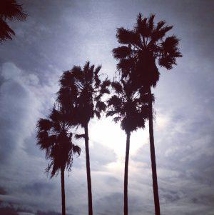 LA Adventures, Part 1