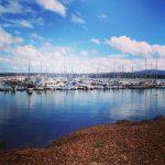LA Adventures, Part 3: To Monterey and Back
