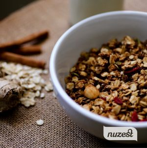 Gingerbread Granola and NuZest Protein Powder Giveaway