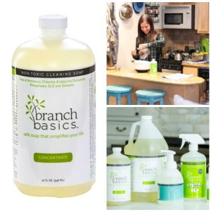 Redefining Clean: Plant-Based Cleaning Soap from Branch Basics