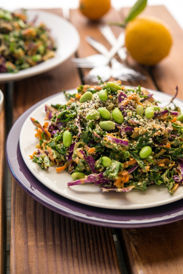 Shredded Rainbow Salad by Jessica Nadel