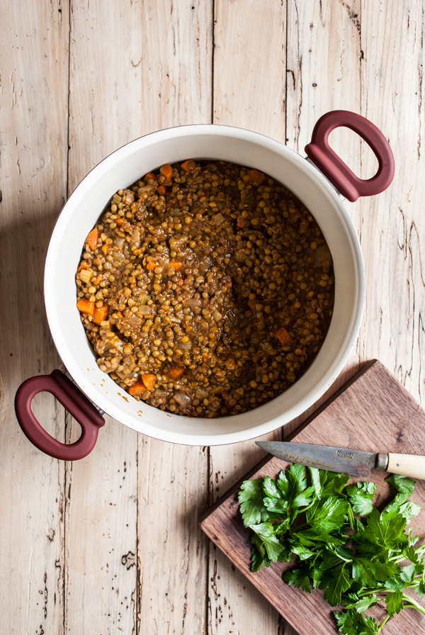 Simple French Lentil Soup   The Full Helping
