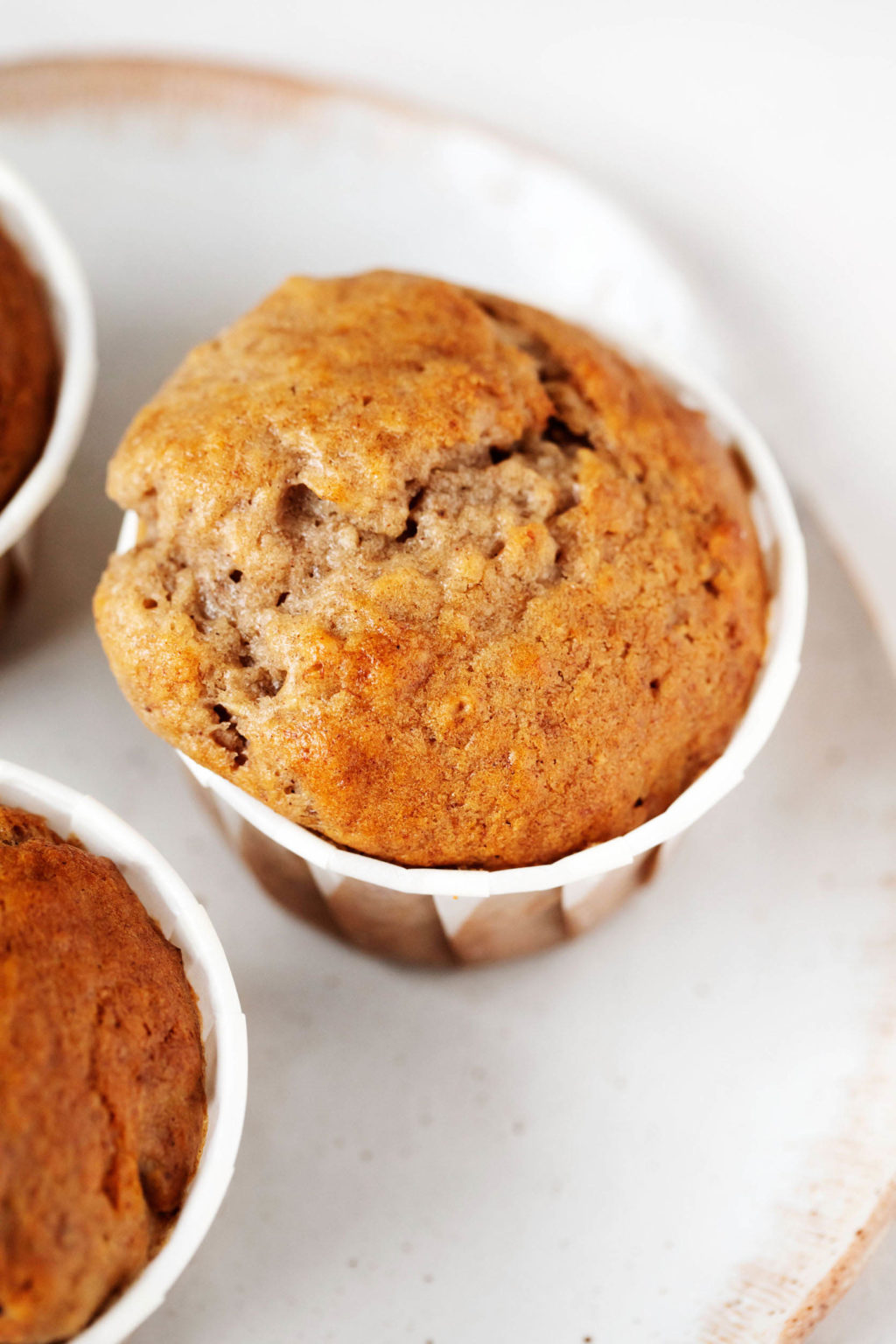 A close up image of a rounded, freshly baked muffin in its liner, resting on a plate.